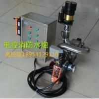 天津PSKD30-80电动消防炮