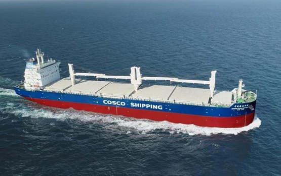 中远海发拟与中远海特开展多用途纸浆船业务合作